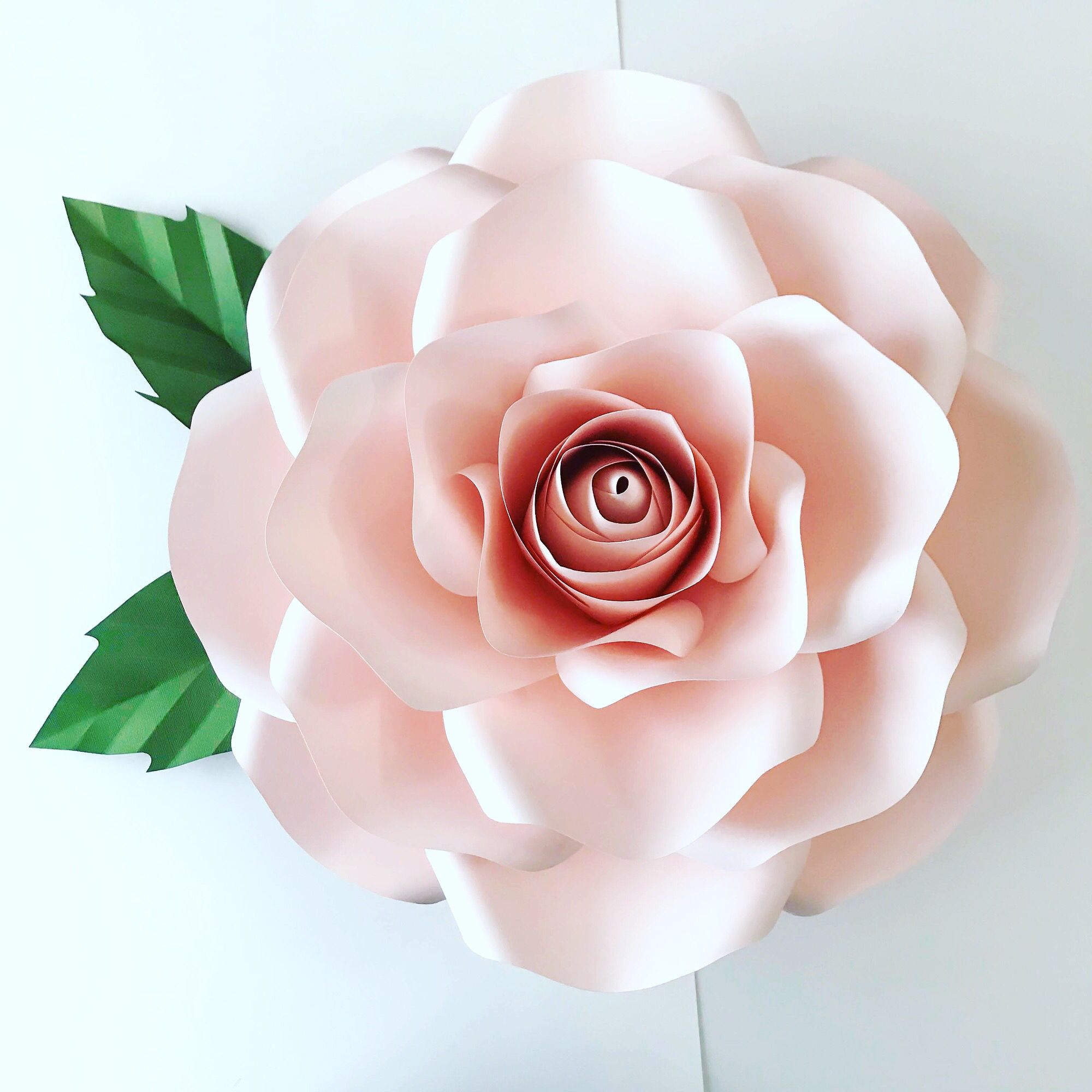 21 Large Paper Flower Template 15 Anos Pinterest Template