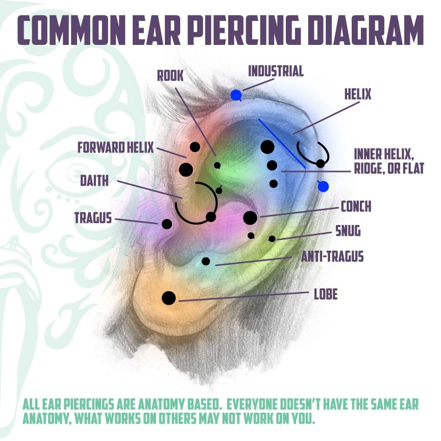 Next: Inner helix, ridge or flat; anti-tragus; rook? conch ...