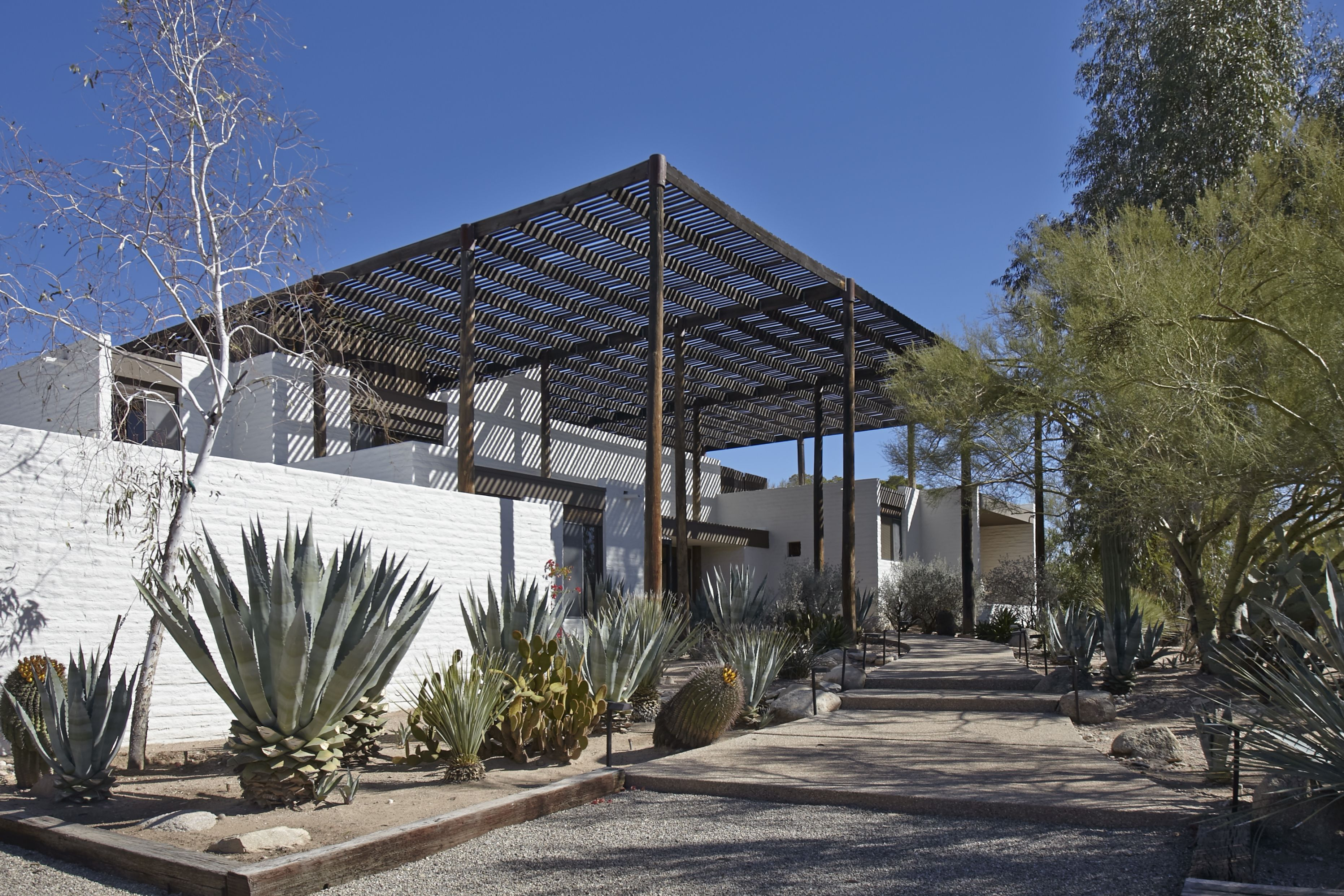 judith chafee dean of desert architecture dean architects and