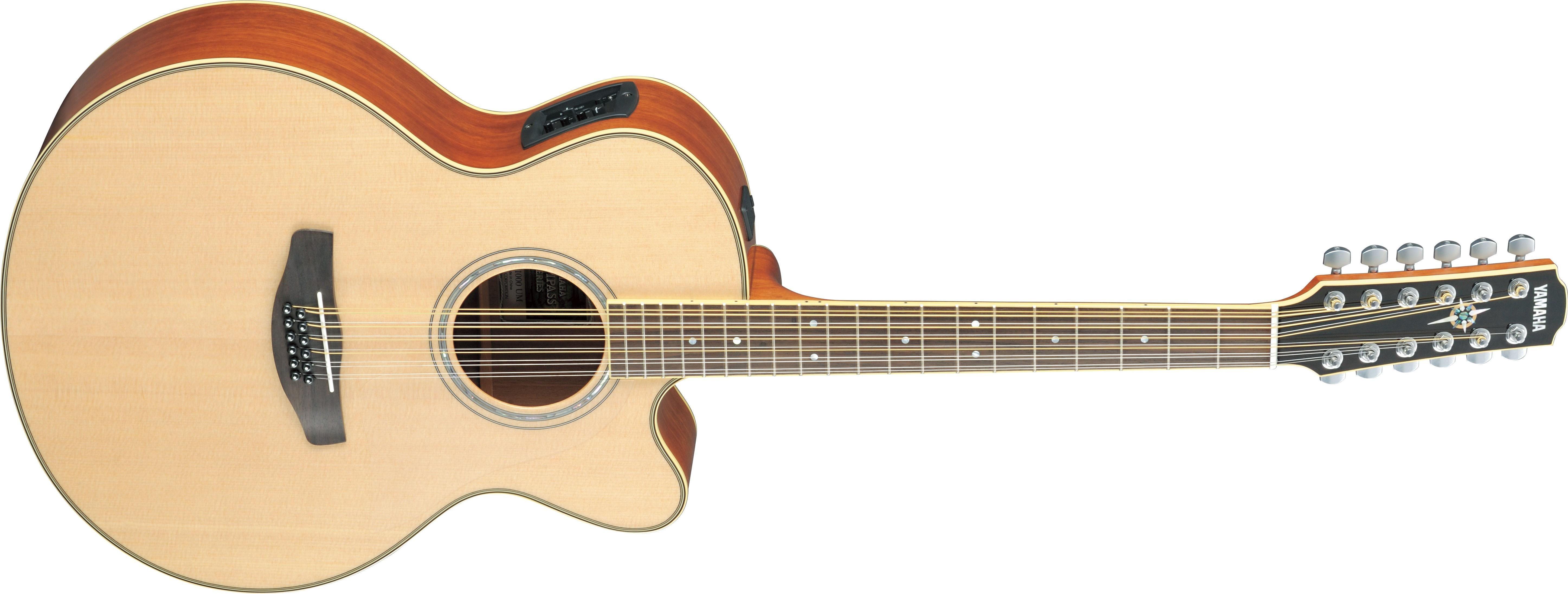Pin on 12string guitars under 1500