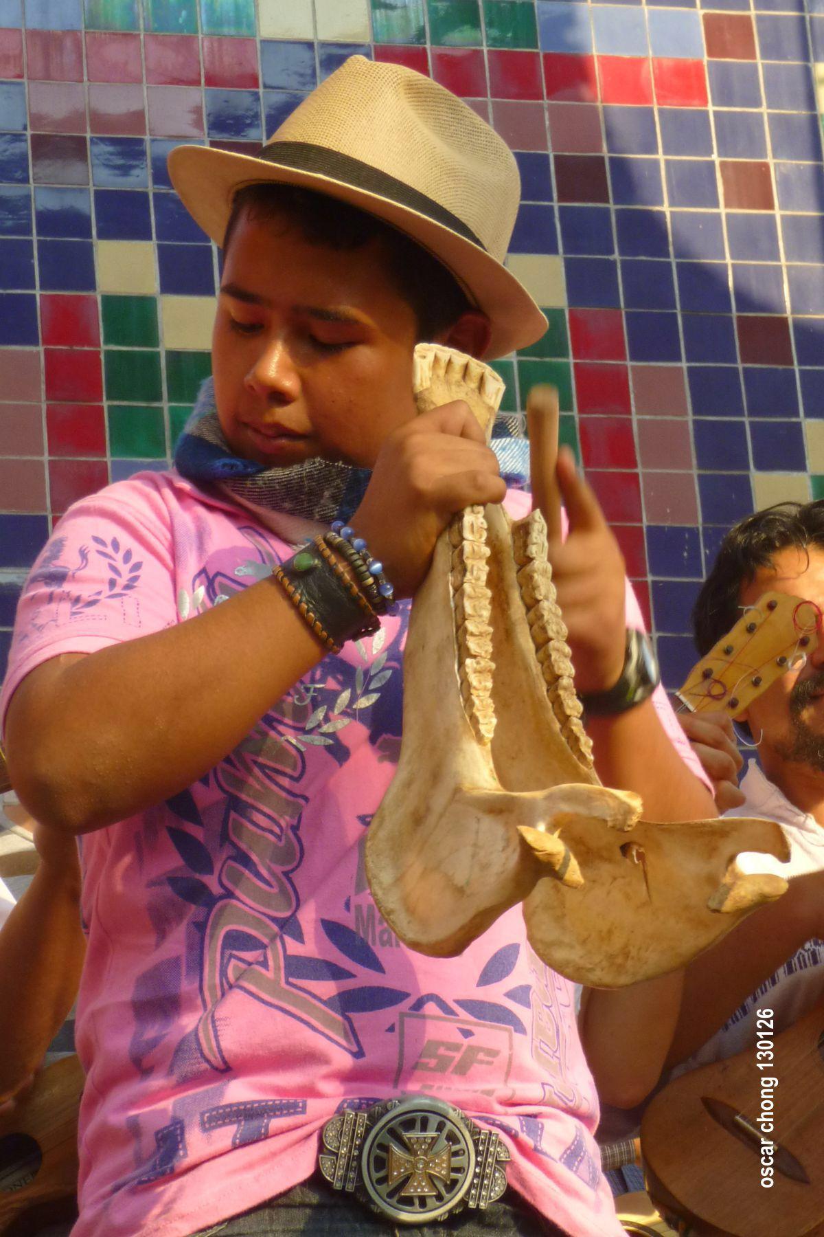 130126. Centro Nacional de las Artes. Festival de Son Jarocho 1