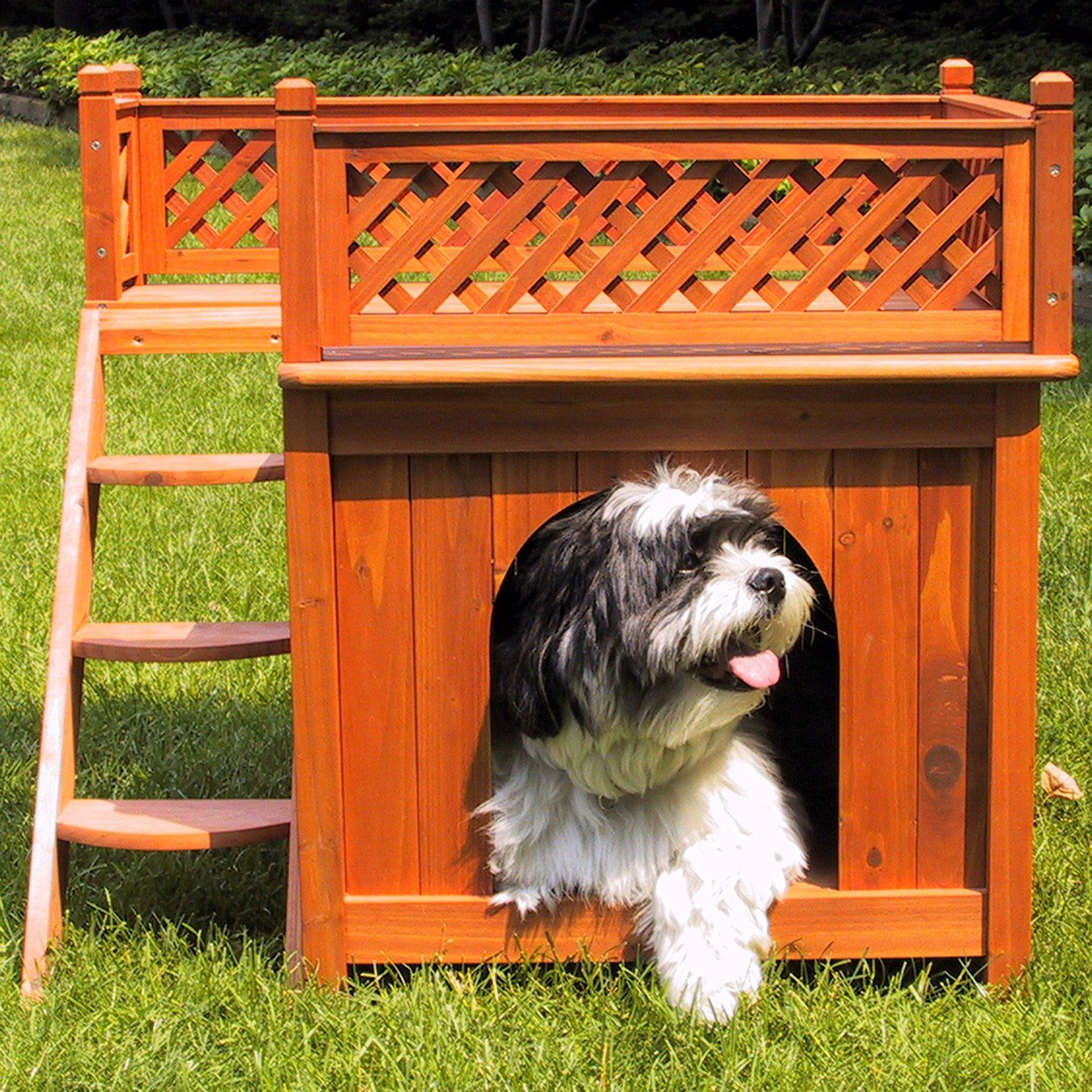 Merry Products Wood Pet Home Room With A View Cool