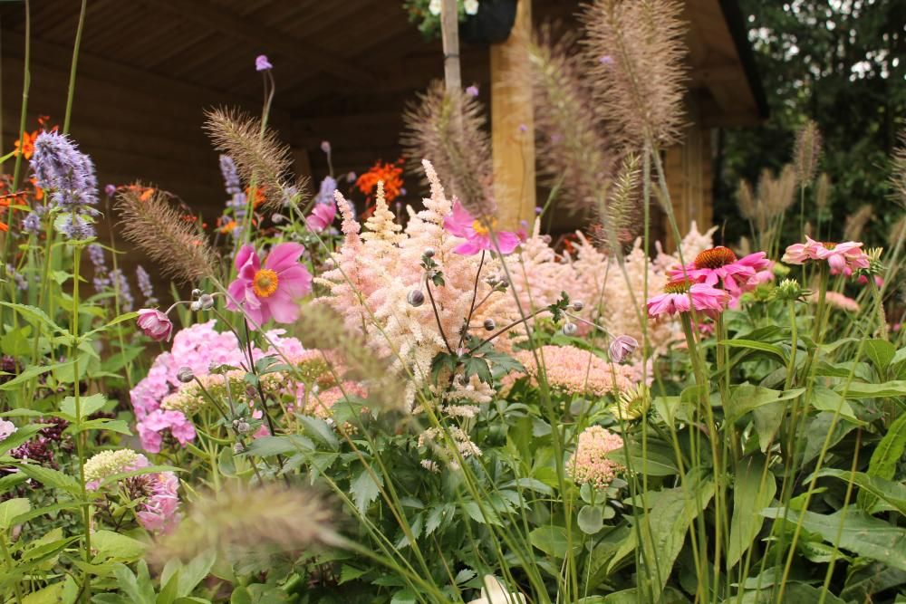 Pin Op Kleurige Tuin Borders