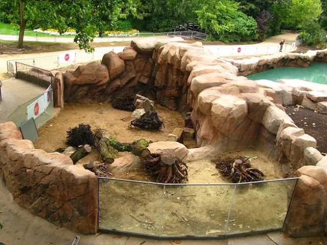 Pin By Ethan Wiersma On How To Start A Zoo Reptile Zoo Zoo Park