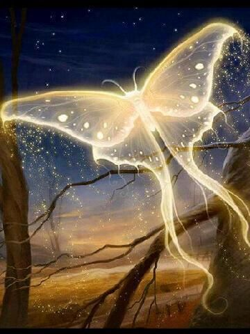 3learn To Get In Touch With The Innermost Essence Of Your Being This True Essence Is Beyond The Ego It Is Fearless It Is Free It I Fantasy Art Fantasy Art