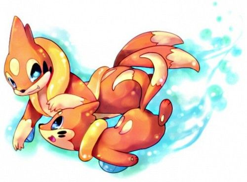 Buizel - Floatzel #418 - #419 evolution