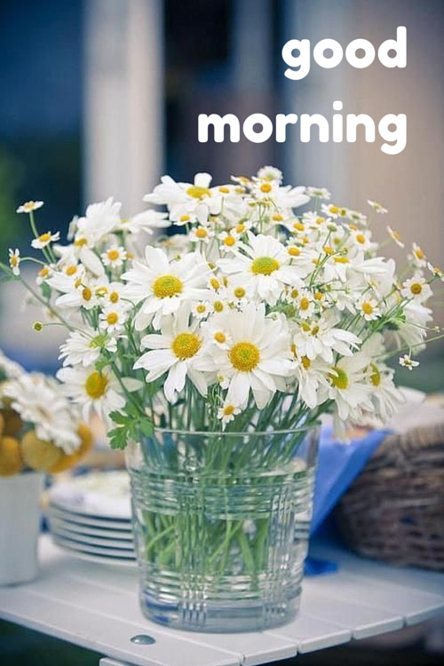 A New Day Starts! - Good Morning Pics | Good morning cards