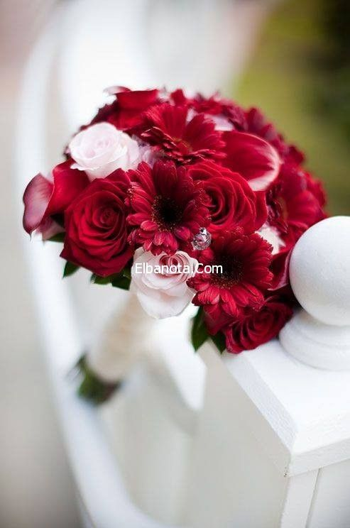 Bridal Bouquet Red Bridal Bouquet Bridal Bouquet Hot Pink