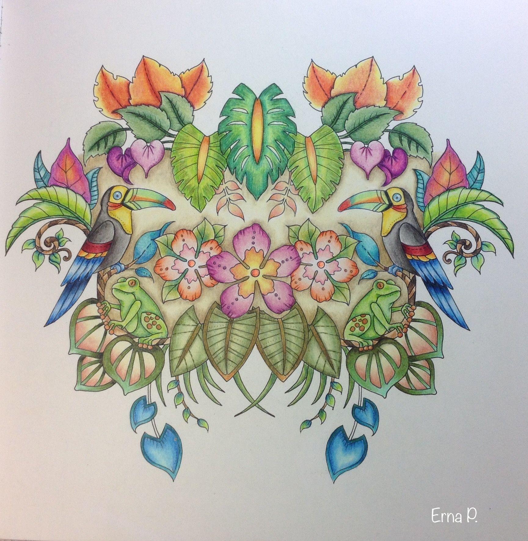 pin by erna piatek on magical jungle pinterest johanna basford
