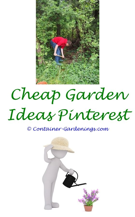small container vegetable gardening ideas - gardener gift ideas for ...
