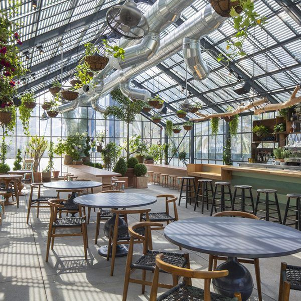 Use Plants For Your Next Interior Design Project Greenhouse