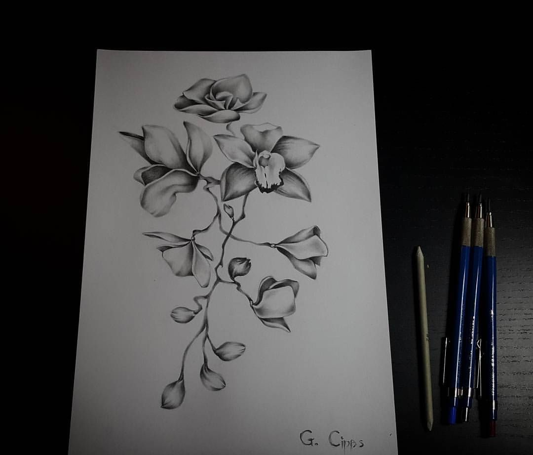 Tattoo Sketch Flower Drawing Orchid Drawing Pencil Sketch