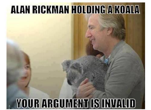 I would like to be come a koala.