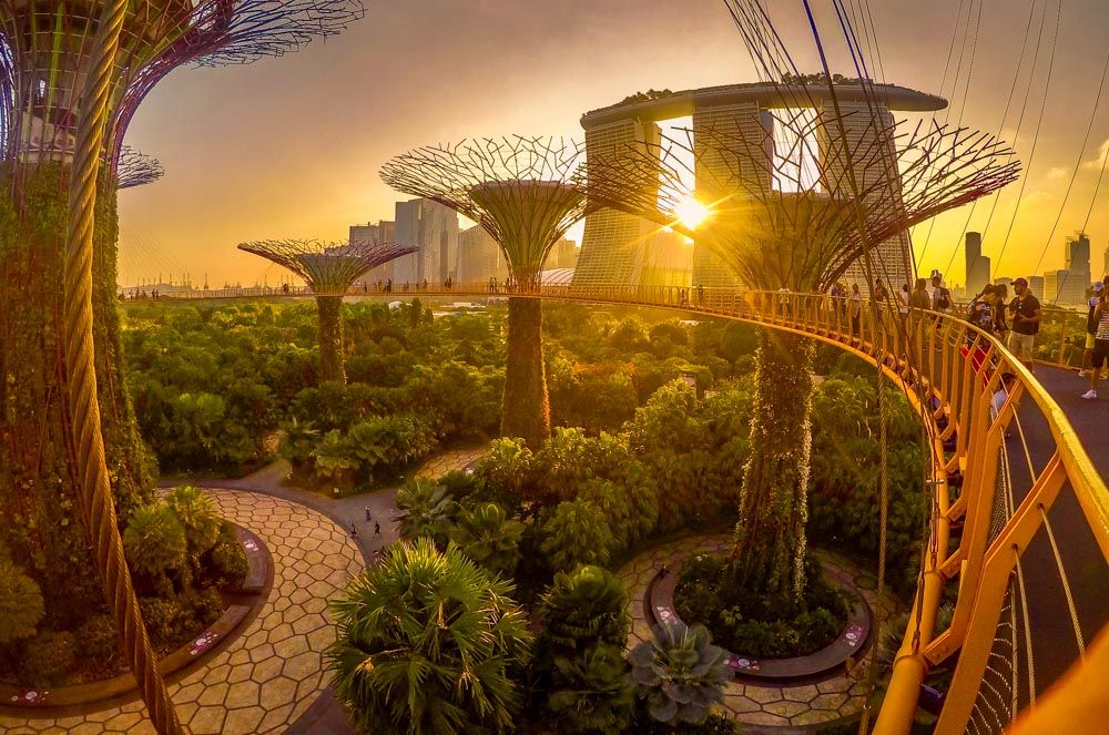 Exploring Singapore The Futuristic City in a Garden