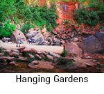 Hanging Gardens at highest Emerald Pool - Zion National Park