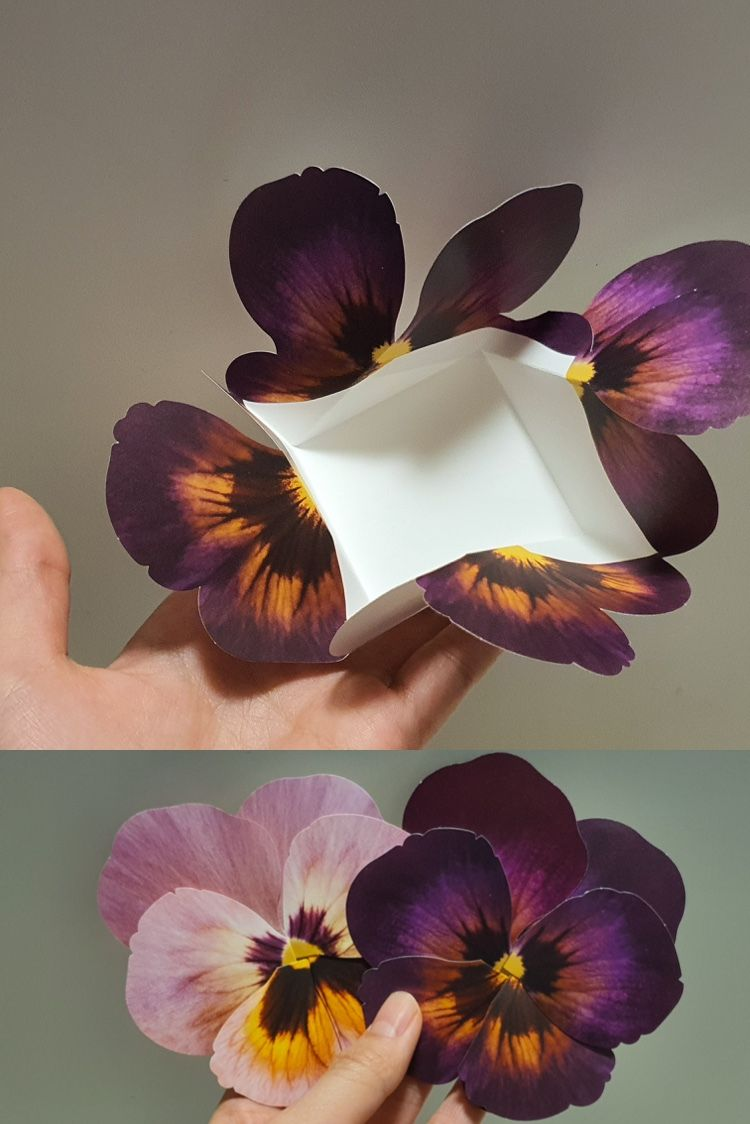 Pdf Template Flower Card Pansy Black Mother S Day Father S Day Flower Unique Card Greeting Card Birthday Card Pop Up Card In 2021 Flower Cards Pansies Flowers Pansies