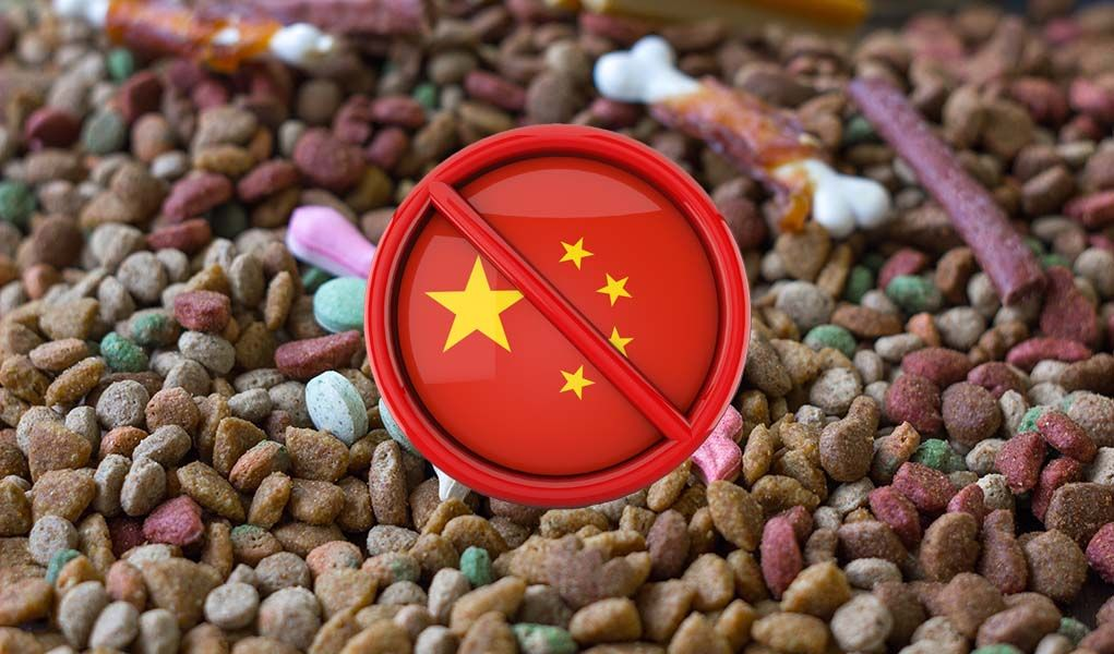 12 Facts About Dog Food Made In China Infographic Limited