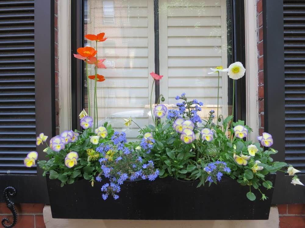 40 window and balcony flower box ideas photos flower
