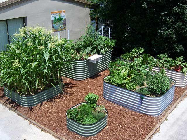 Vegetable Growing Is Easy With Birdies Garden Products Raised Garden Beds U0026  Accessories