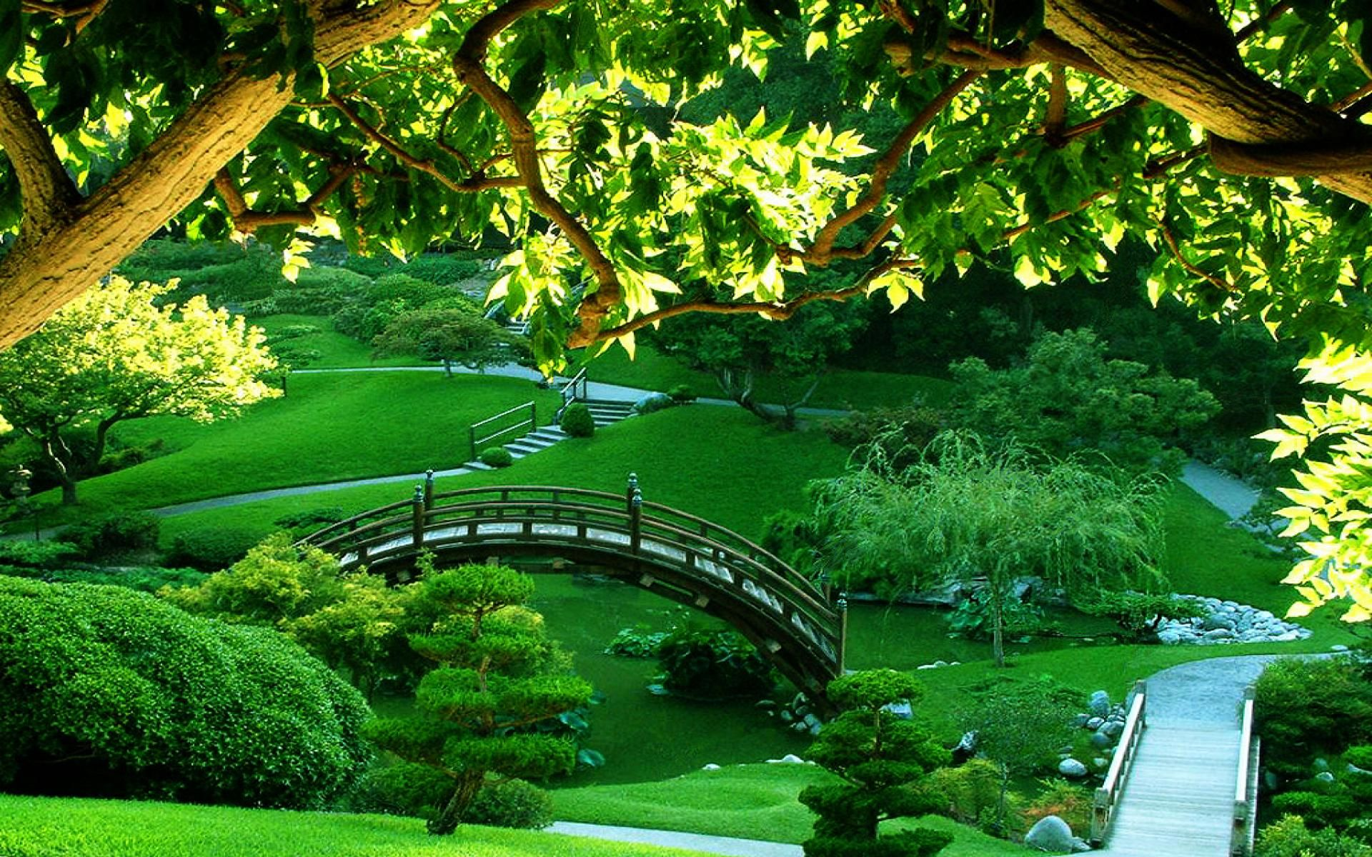 Most Besutiful Wallpaper And Real Green Garden Japanese Garden Beautiful Gardens Green Garden