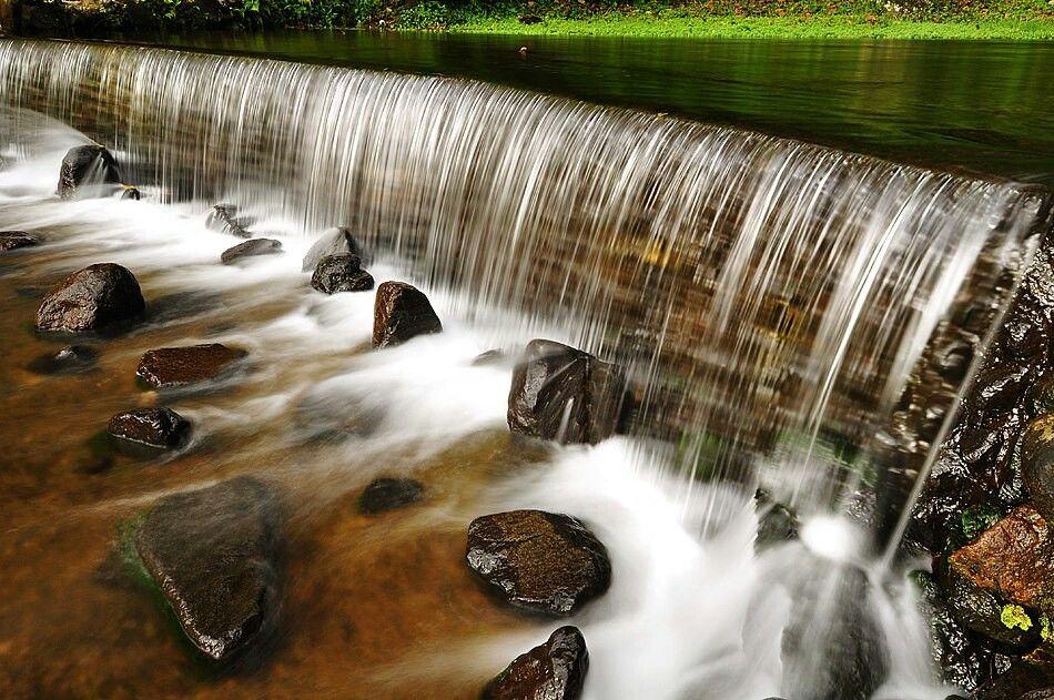Cibodas Botanical garden Indonesia frm flikr