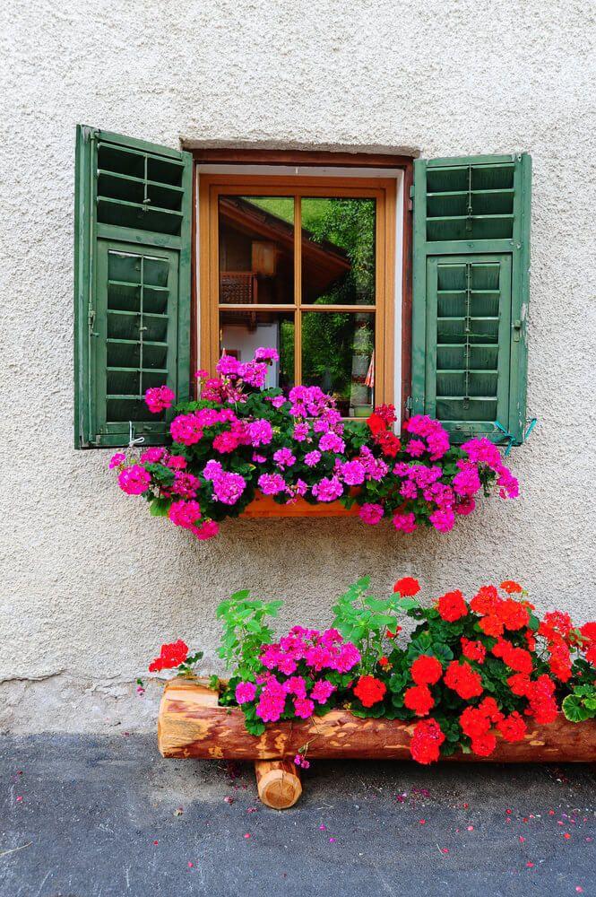 40 Window And Balcony Flower Box Ideas Photos Home Stratosphere Window Box Plants Balcony Flower Box Balcony Flowers