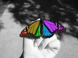 Butterfly Fly Away  :)