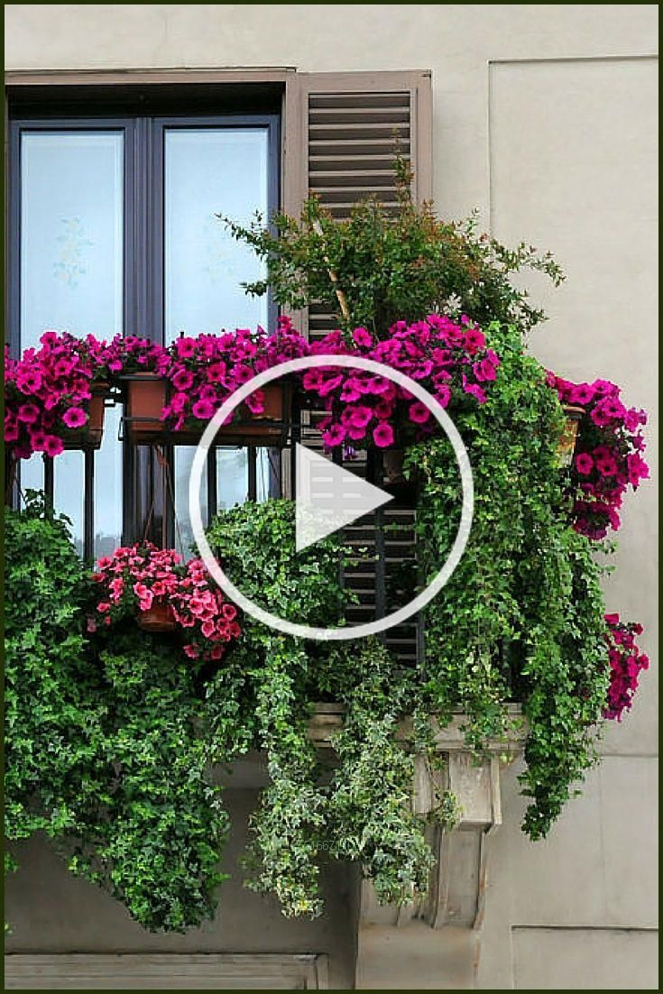 Photo of Now thats a balcony garden.Planet succulent, balcony garden, apartment gardening…