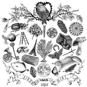 illustration fortifem