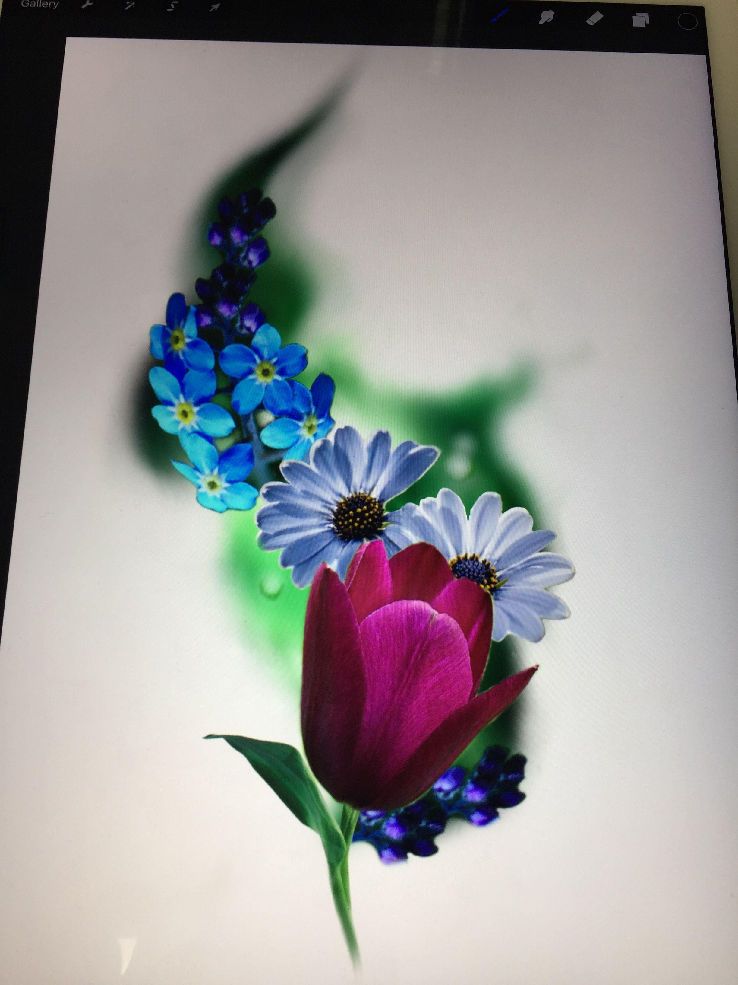 finelineperception Sleeves ideas, Plants, Garden