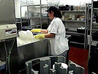 A Typical Restaurant Dishwasher Washing Dishes Restaurant Resturant