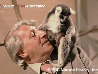 Animal Magic (UK) tv show photo Amazing program for a child