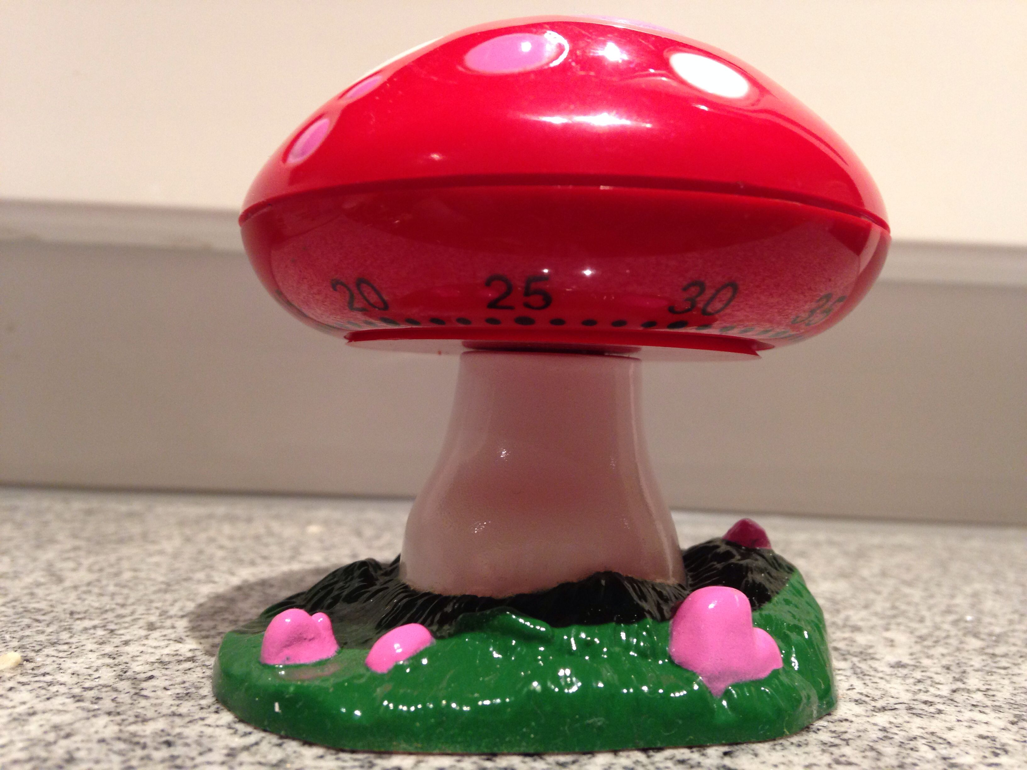 Fairytale mushroom kitchen timer. Yes, I bought it!
