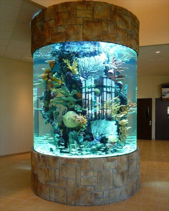 Aquarium rond central mansion acuario peceras - Acuario en casa ...