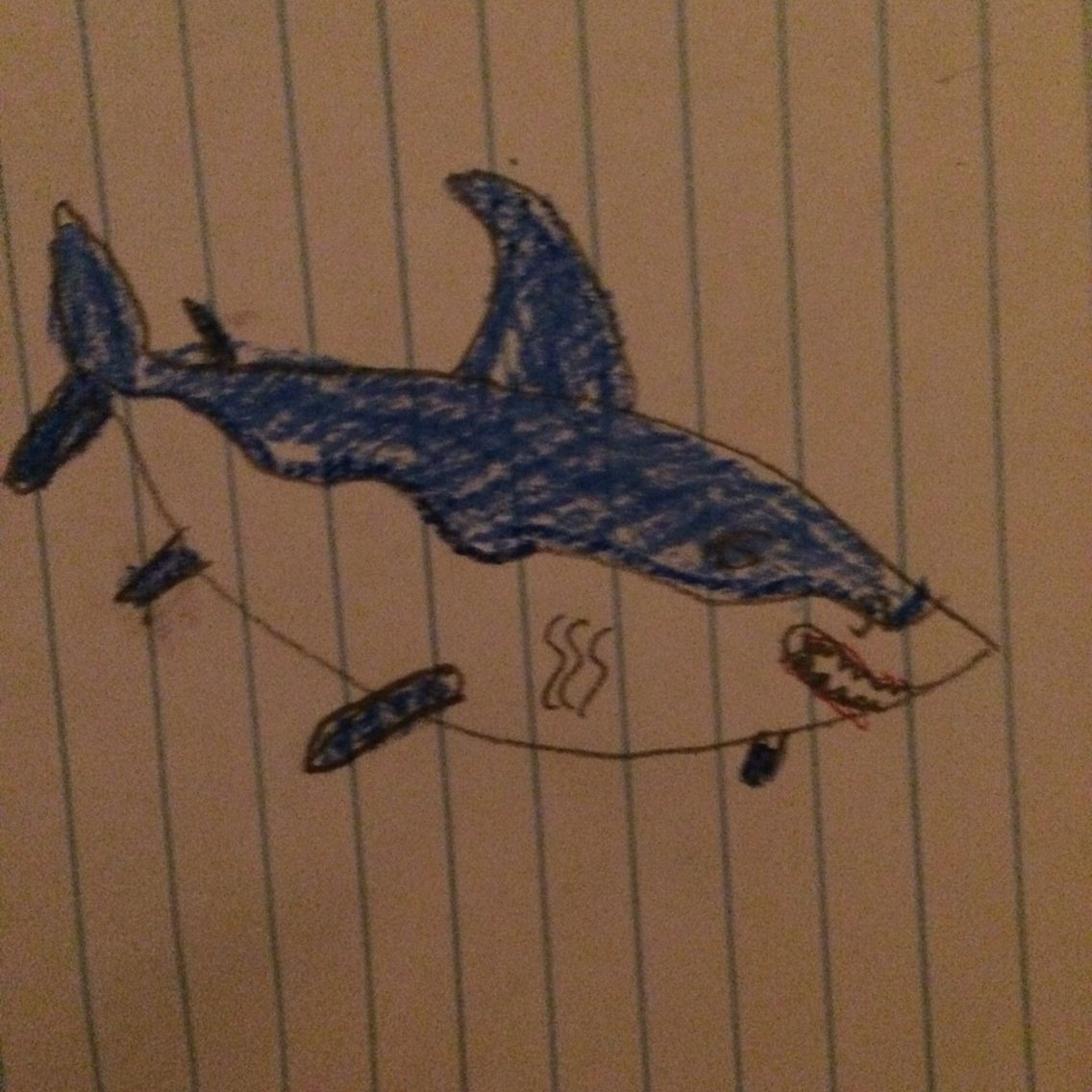 #sharkweek2015 My son says this must be a female look at that belly! REALLYCHASE!!!#mybabiesdrawing