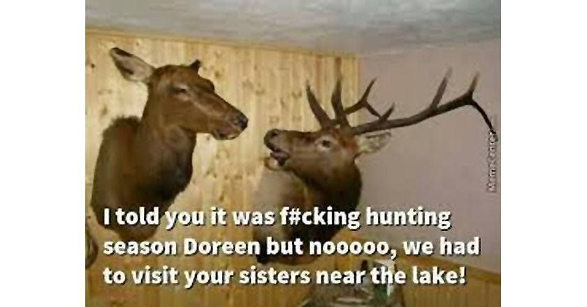 Funny Reindeer Meme : 14 deer hunting memes you definitely want to share [pics] deer hunting