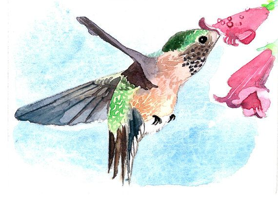 Art print of an ACEO watercolor Hummingbird and cactus ACEO Limited Edition
