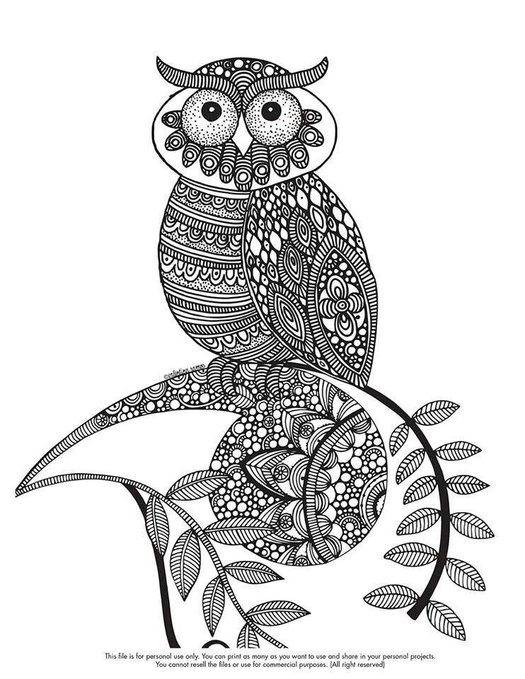 line art Coloring Pages Owl
