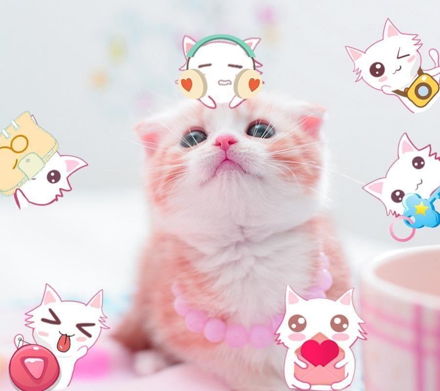 Imut Gambar Hewan Lucu Kartun Kucing Jessy Gallery Di 2020 Gambar Hewan Lucu Gambar Hewan Hewan Lucu
