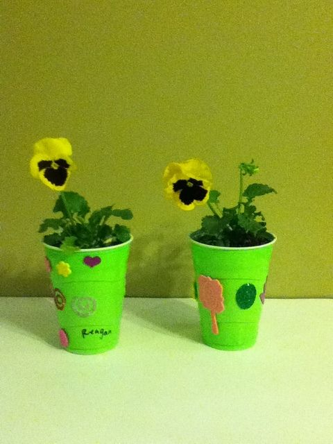 blossom flower pot station-plant flowers and decorate pot