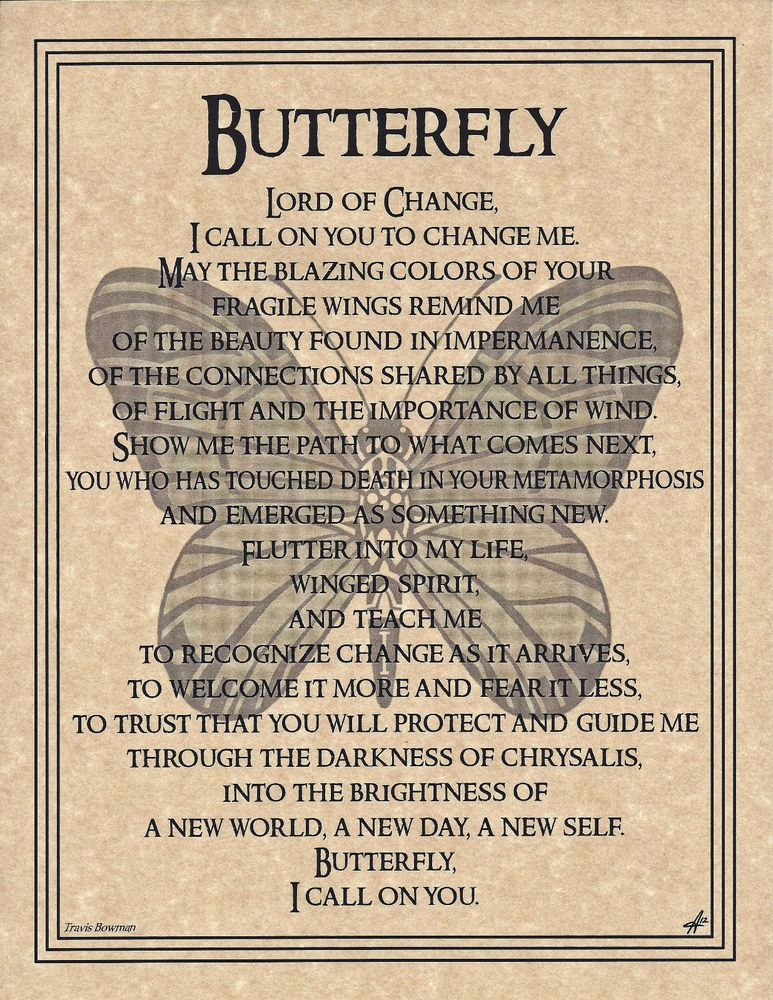Details about BUTTERFLY Prayer Shaman Animal Spirit Poster