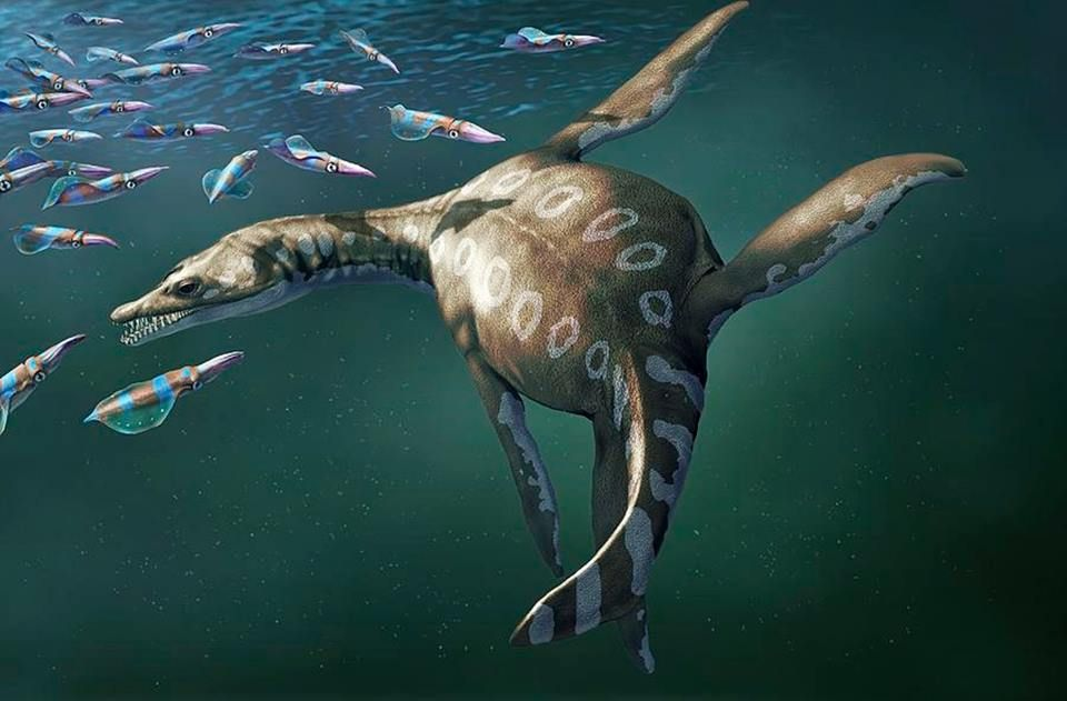 Водоплавающий динозавр картинки