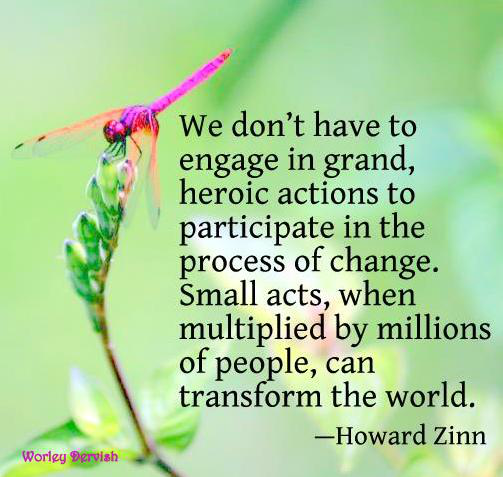 ...small acts when multiplied by millions of people, can change the world....