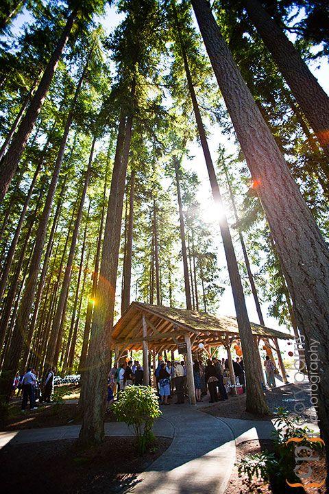 kitsap memorial state park wedding
