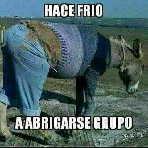 Humor De Viernes Spanish Humor Humor Ecards Funny