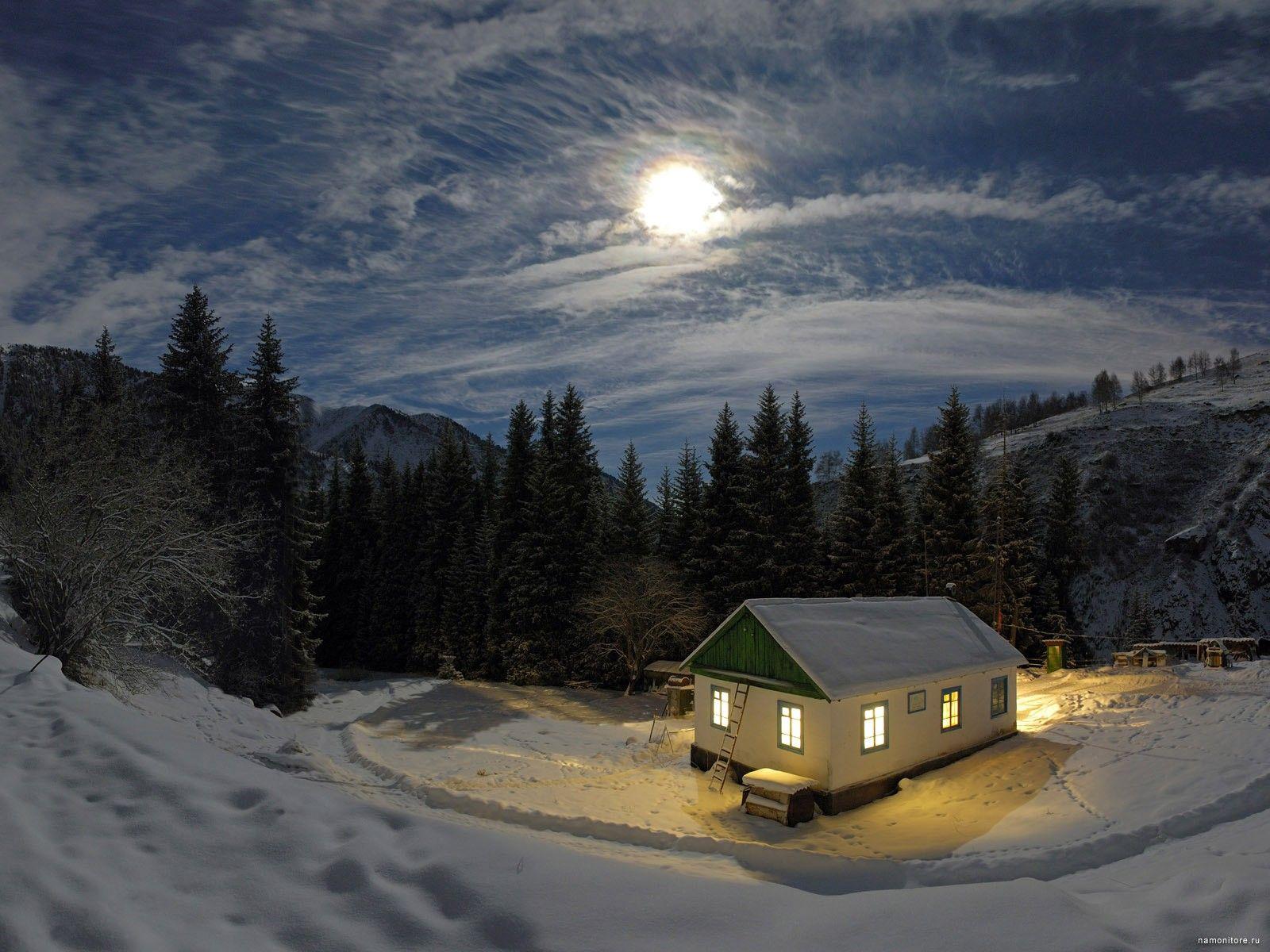 Зимняя ночь, зима, лес, лучшее, ночь, пейзажи, природа ...