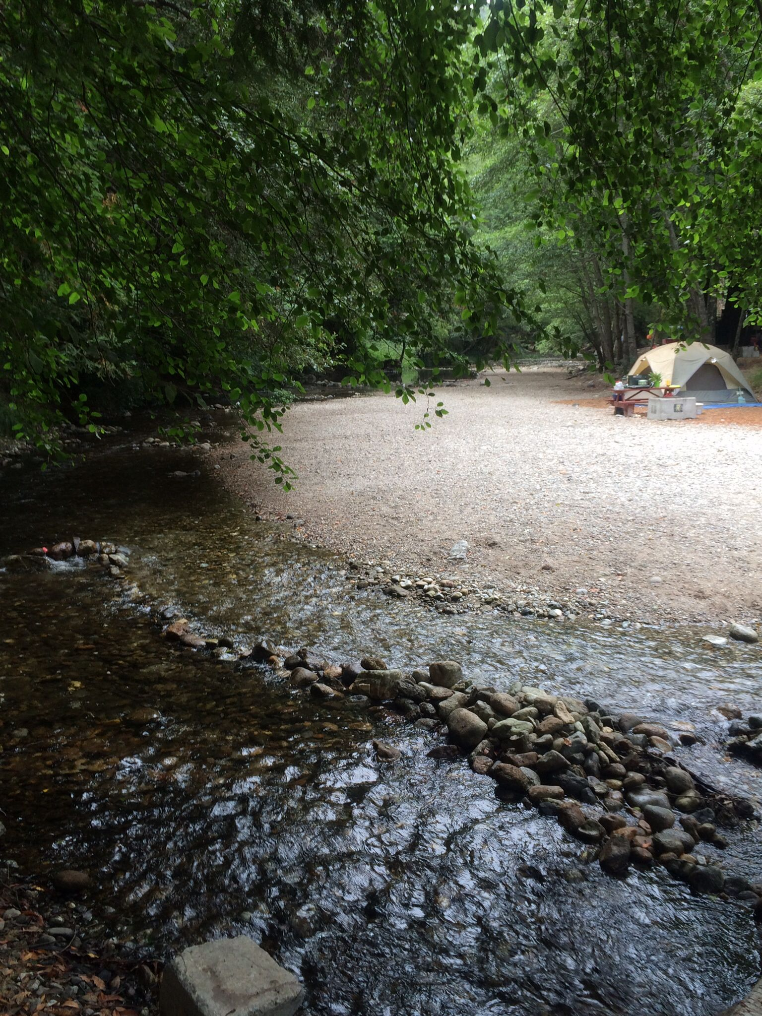 Camp Spot At Riverside Campground In Big Sur Big Sur Camping Pinnacles National Park Big Sur