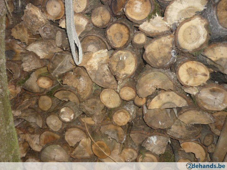 Brandhout te koop u ac in westerlo brandhout