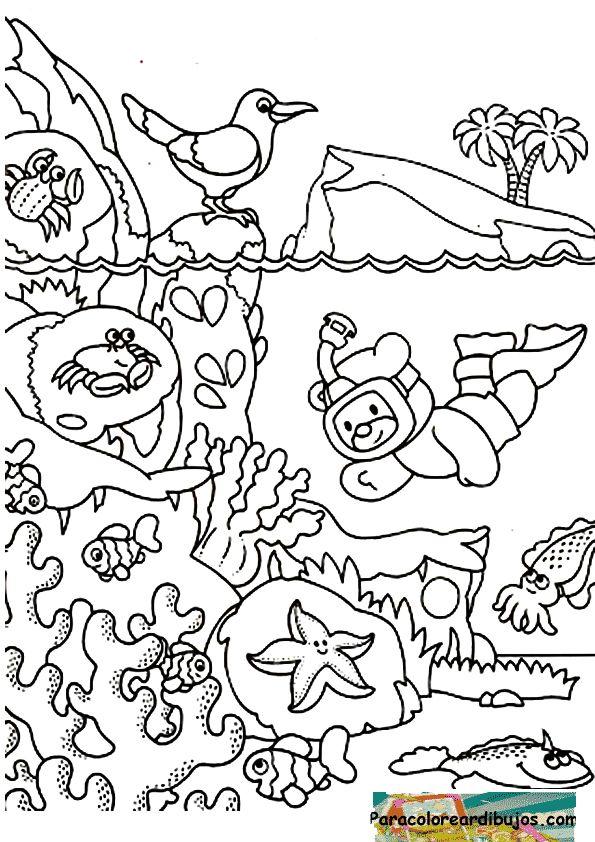 fondo del mar fondo marino pinterest