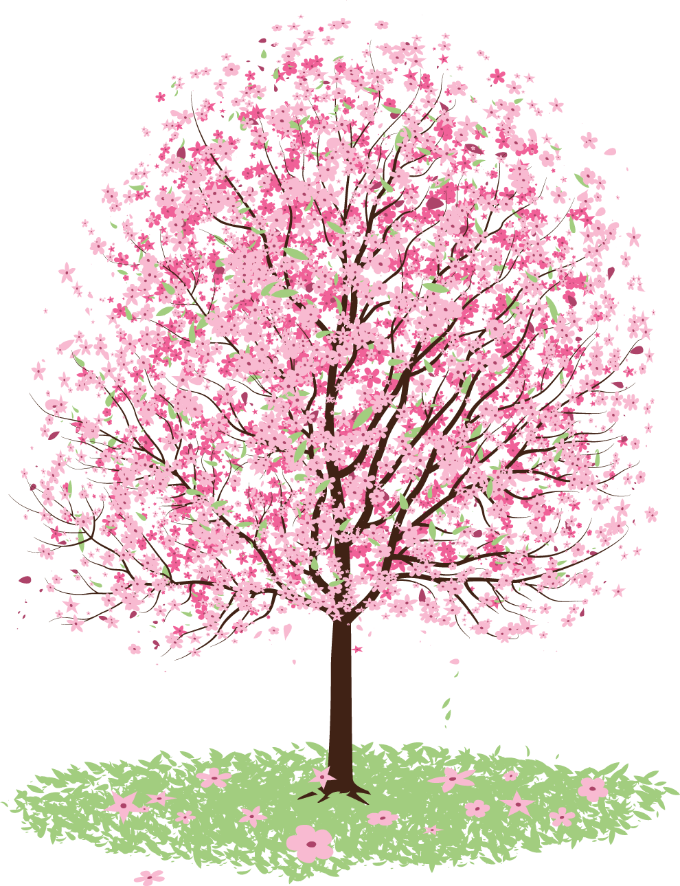 View Large Size Freeuse Stock Cherry Blossom Tree Clipart Blossom Tree Vector Free Png Download In 2020 Cherry Blossom Painting Blossom Trees Cherry Blossom Tree